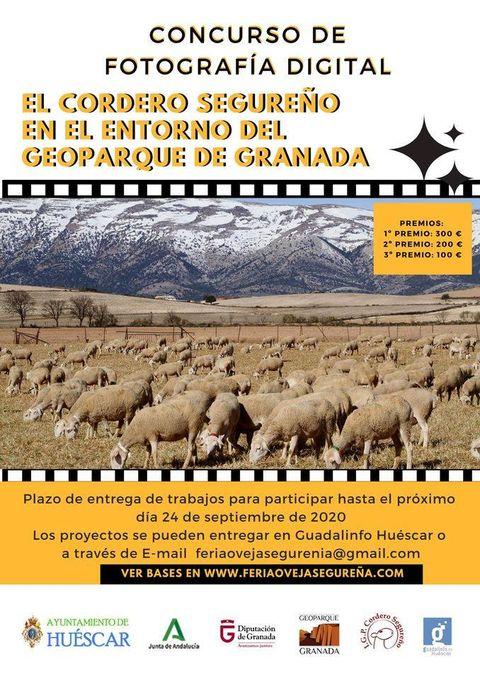 EL CORDERO SEGUREÑO EN EL ENTORNO DEL GEOPARQUE DE GRANADA. Concurso de fotografía digital